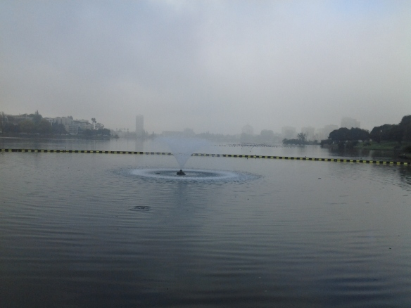 Lake Merritt in the Winter