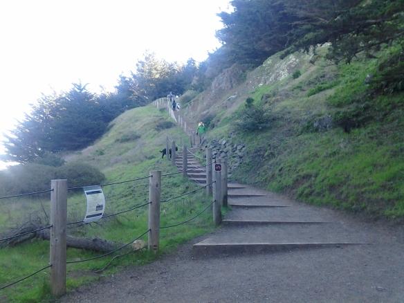 Stairs, stairs, stairs...