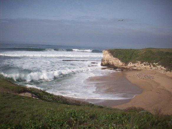 Santa Cruz coastline!
