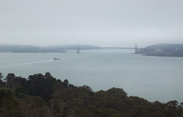 Golden Gate Bridge, capped in fog